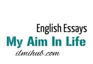 Sample essay on Ambition in life